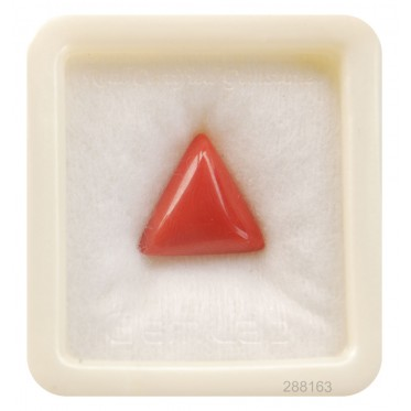 Natural Certified Coral Triangular 9+ 5.65ct