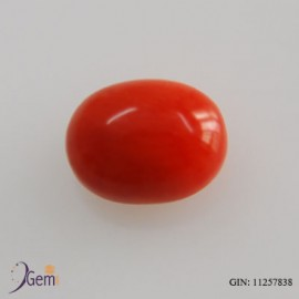 Certified Red Coral Premium 3+ 2ct