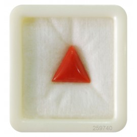 Natural Coral Triangular 6+ 4ct
