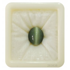 Cats Eye Premium 10+ 6.05ct
