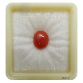 Certified Red Coral Premium 5+ 3.05ct