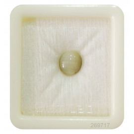 Cats Eye Std 1.5 CT (2.5 Ratti)