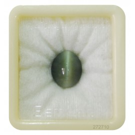 Astrological Cats Eye Premium 10+ 6.2ct