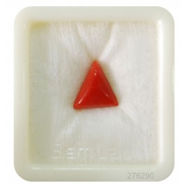 Astrological Coral Triangular 5+ 3.1ct