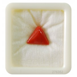 Natural Coral Triangular 6+ 3.9ct