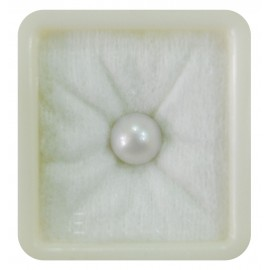 Lab Certified Pearl South Sea 6+ 3.8ct
