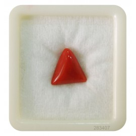 Natural Certified Coral Triangular 7+ 4.3ct