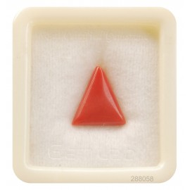 Natural Certified Coral Triangular 8+ 4.8ct