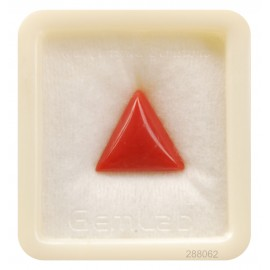 Natural Certified Coral Triangular 8+ 4.85ct