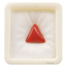 Natural Certified Coral Triangular 8+ 5ct