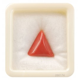 Astrological Coral Triangular 9+ 5.8ct