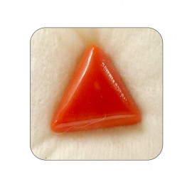 Natural Red Coral Triangular 13+ 7.95ct