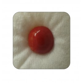 Certified Red Coral Premium 6+ 3.75ct