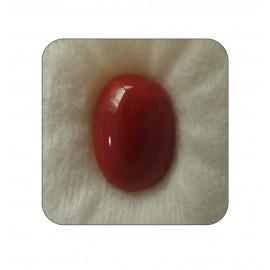 Certified Red Coral Premium 8+ 5.05ct